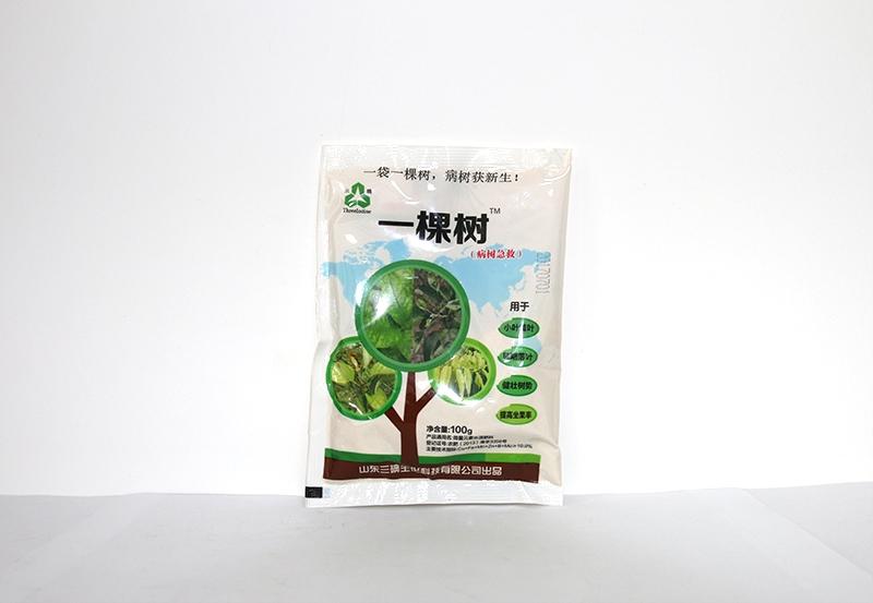 广东一棵树